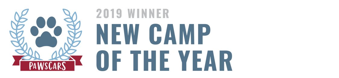New Camp of the Year 2019
