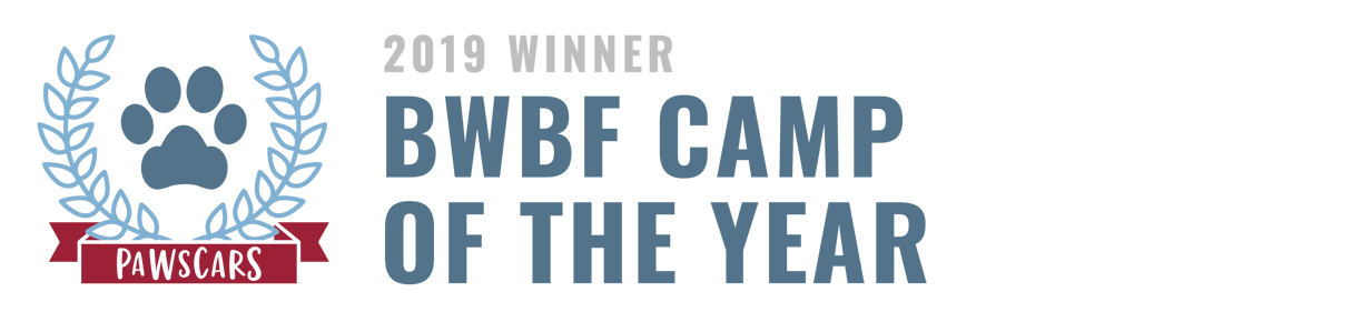BWBF Camp of the Year 2019