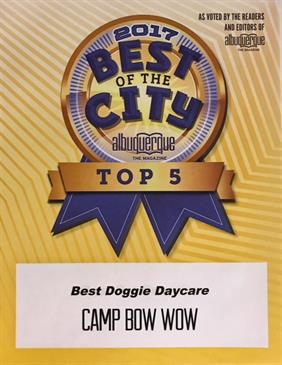 Best of the City Albuquerque Top 5. Best Doggie Daycare Award