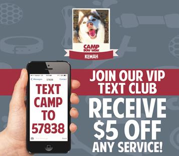 TEXT CAMP TO 57838. Join our VIP Text Club. Receive $5 off any service at Camp Bow Wow Kemah