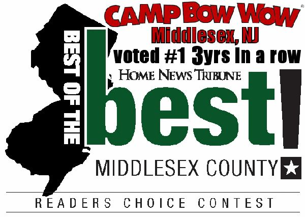 Best of the Middlesex County 3 Years in a Row