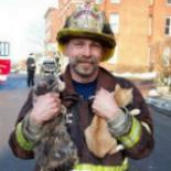 Fireman Saving Pets