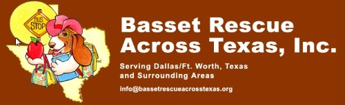 Basset Rescue Across Texas