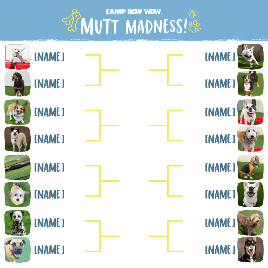 Mutt Madness Flyer
