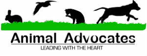 Animal Avocates Leading with the Heart