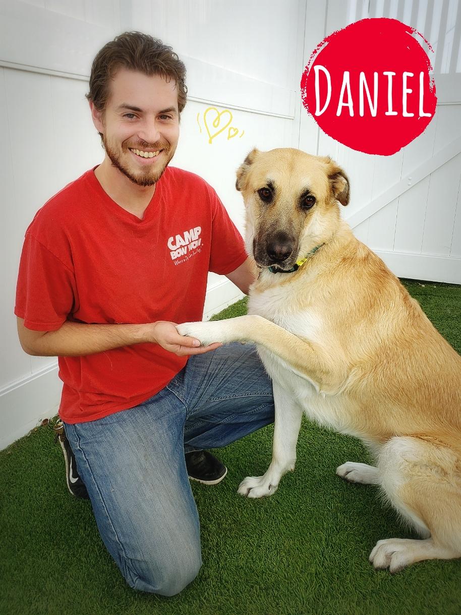 Photo of Daniel Cortes