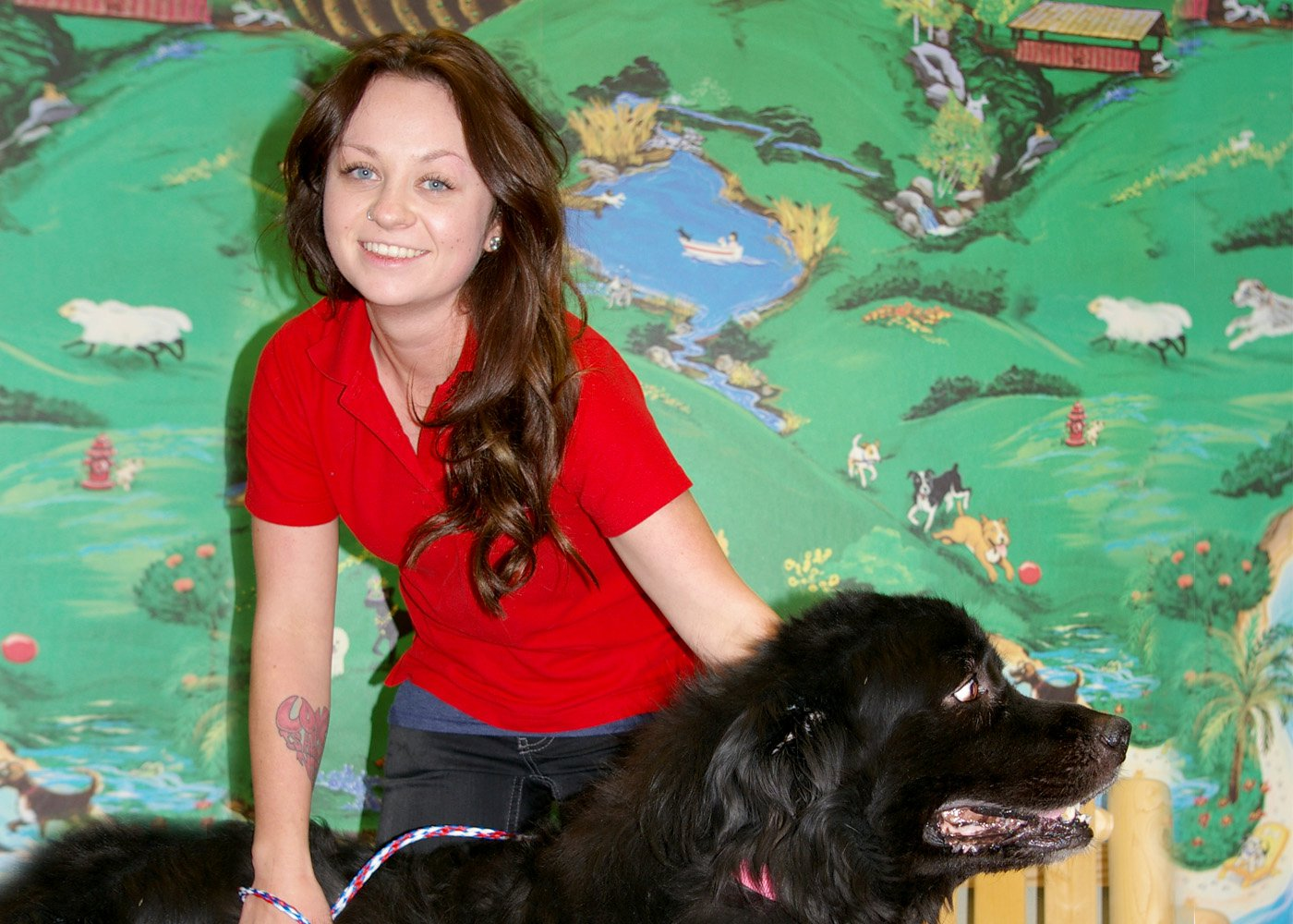 Photo of Amy Years With Camp Bow Wow: 6