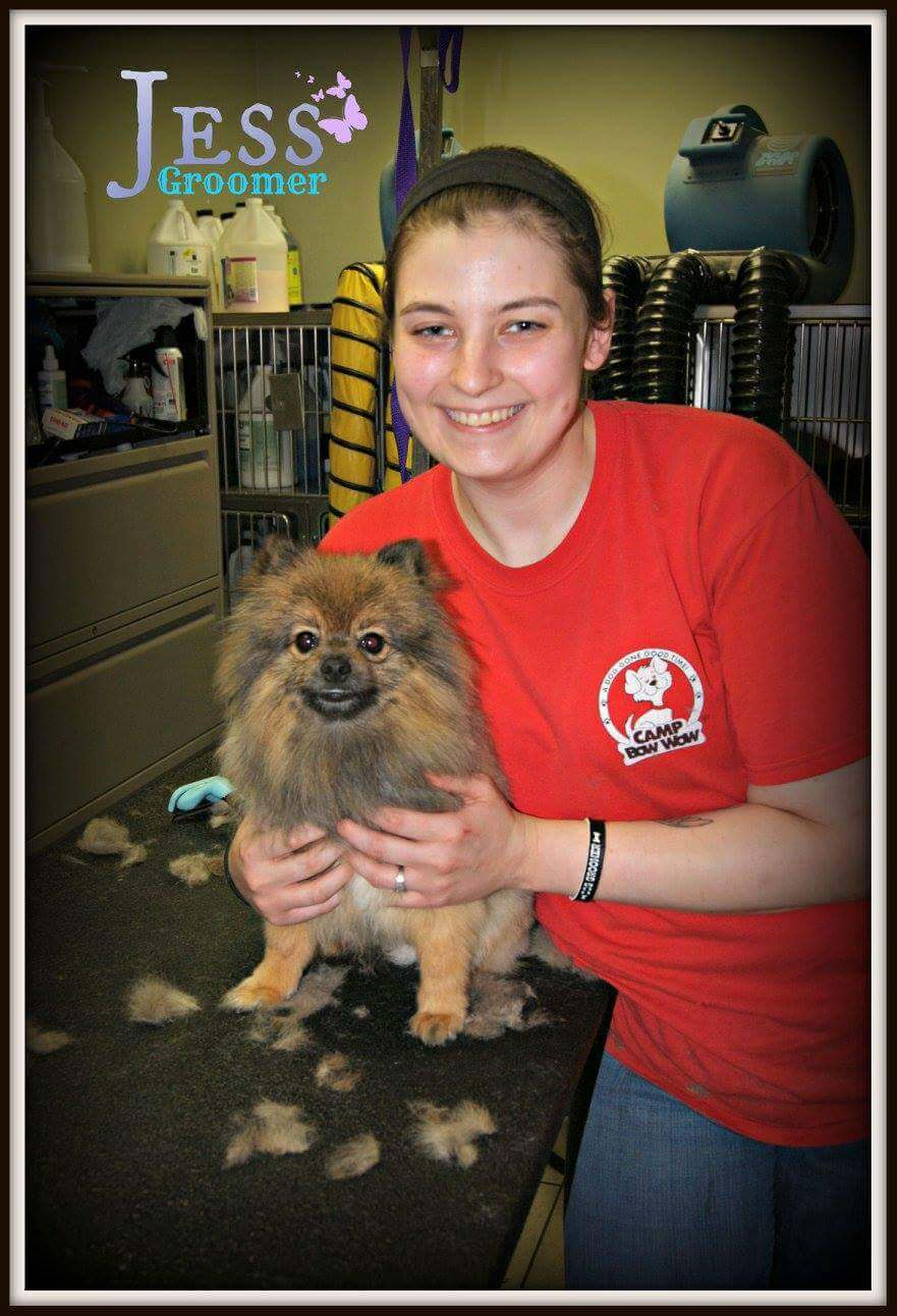 Photo of Jess Years With Camp Bow Wow: 7