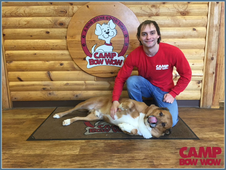 Photo of Ian Years With Camp Bow Wow: 2 Months