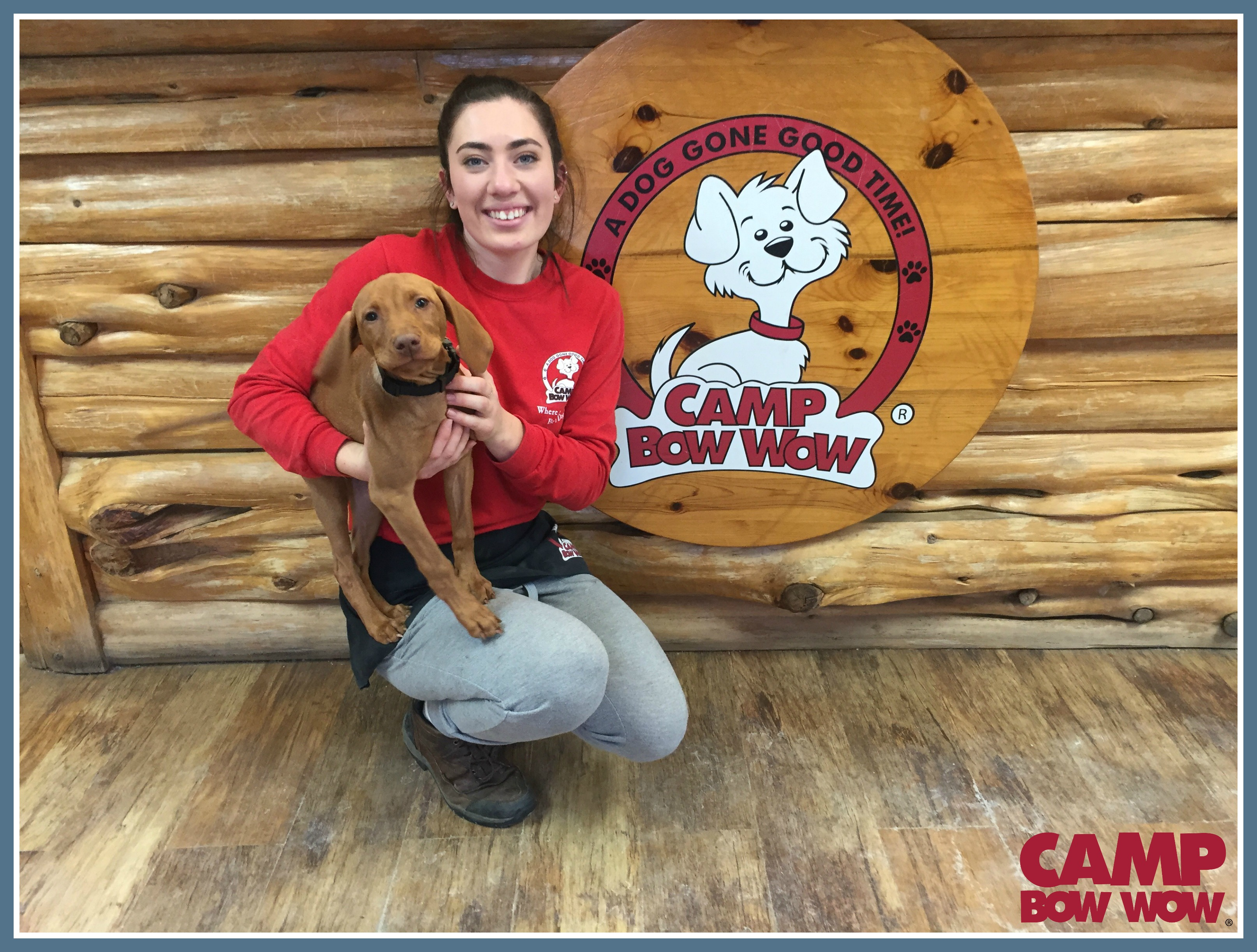 Photo of Ella Years With Camp Bow Wow: 1