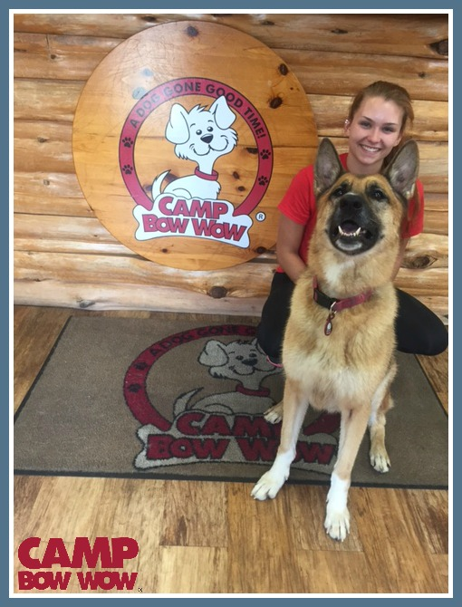 Photo of Lexis Years With Camp Bow Wow: 1